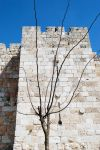 Near the Jaffa Gate, Jerusalem by dpt56