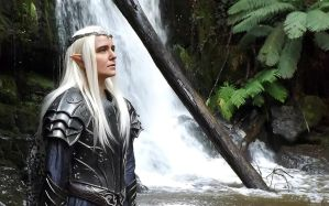 Thranduil BotFA Cosplay 2 by SSward