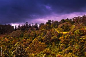 Mountain Puncak by eyesweb1