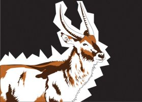 Waterbuck _Vector by neslockheart