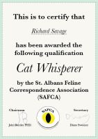 Qualification: Cat Whispering by DorifutoRabbit