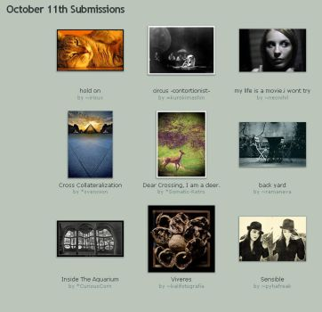 October 11th Submissions by Optimal-Photo