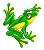 Foss Frog by Phoenix-Cry