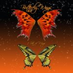 Butterfly Wings 6-2 by cocacolagirlie