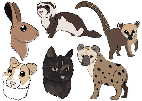 Batch of animals by kimberley1998