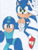 Two Blue Heroes by Piplup88908