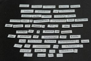 Magnetic Poetry by waggysue
