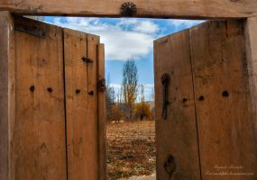 Door by farzanehlphl