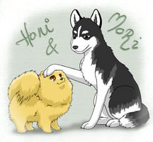 Honi - Mori dogs by wallabby
