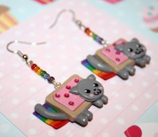 Nyan Cat Earrings :3 by KilllerCupcake