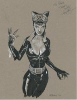 Catwoman Commission by grover80