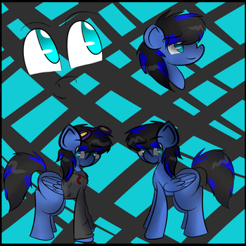 .:COMM:. Silent Waters Reference Sheet by ZiraButt