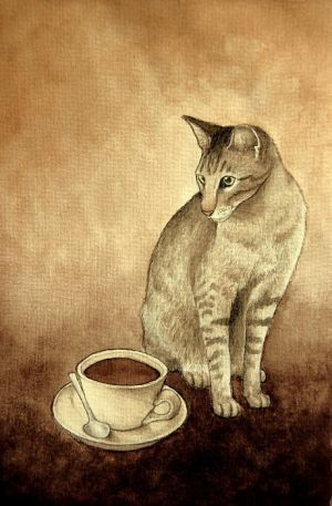 cafe cat by moussee