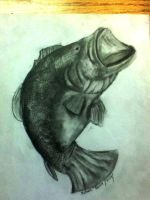 My Bass Drawing by baran700