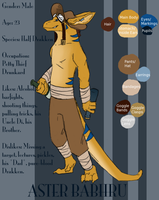 New Aster Ref by SuperRara