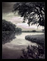 L'etang by darkened-flame