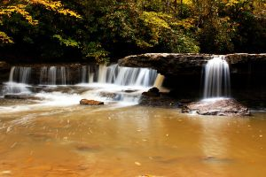 mash fork falls by tiny-sparrow