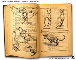 Animals Tuto 1 by UnicatStudio