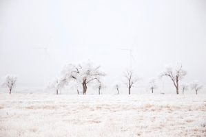 Wind Turbine and Icy Trees by hhill9