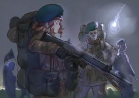 Falkland War by Erica1940