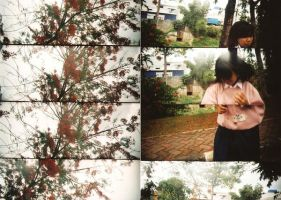 i will dance for flowers by andre-supersampler