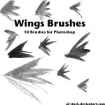 Wings Brushes 2 by sd-stock