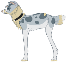 Merle Dog Sold by fantastic-mr-fawn
