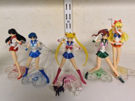 Sailor Senshi Assembled! by tasakeru828