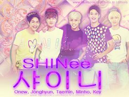 Shinee Wallpaper by DDLoveEditions