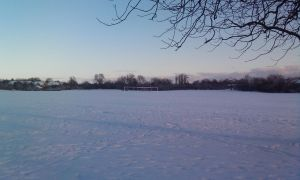 snowy field by conconlish