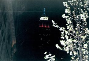 Empire State Building - RWB by drumgirl