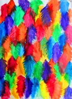 rainbow painted feathers by Mrs-Elric-613