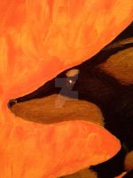 Leaping Doxie - Detail by navcallahan