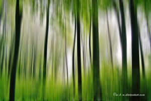 green forest abstract by a-b-n