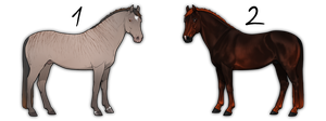 Horse adoptables OPEN by i3nici