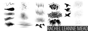 The RLM Brush Collection by RachelLeanneMead