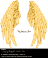 Winged Fantasy V2.2 - Golden (Free) by Thy-Darkest-Hour