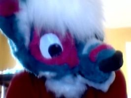 Meet Bubbles! My FURst fursuit ever! by PurpIe-Guy