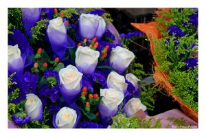 Bouquet by Alcamin