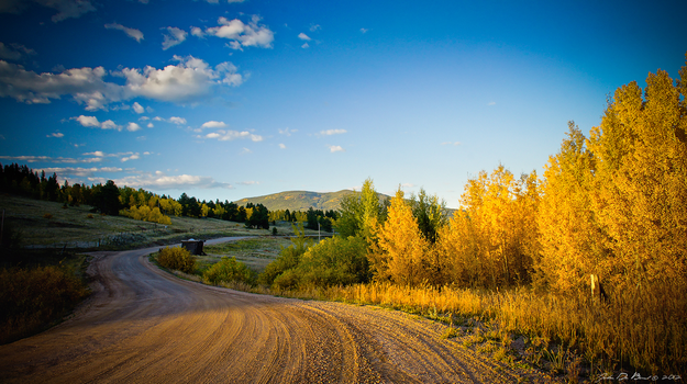 Gold Of The Backroads by kkart