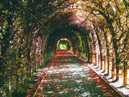 Tunnel. by RomanNutss