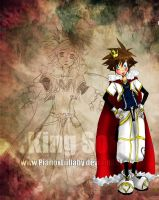 King Sora Form by PianoxLullaby