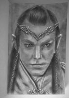 Lord Elrond by Mitheriel