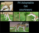 FH Cat Adoptable .:SOLD:. by courtneyrc