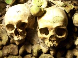 Skulls and Bones 2 by Dragoroth-stock
