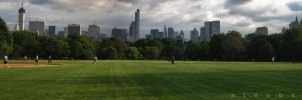 The Great Lawn at Central Park by steeber