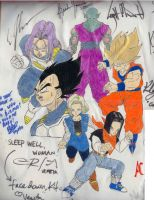 The Infamous DBZ Pillow by kikoro