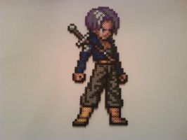 Trunks by Crausse