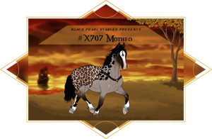X707 BP's Motheo by BlackPearlStables