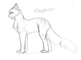 TBT || Graywhisker WIP (Read Description) by SapphireSquire